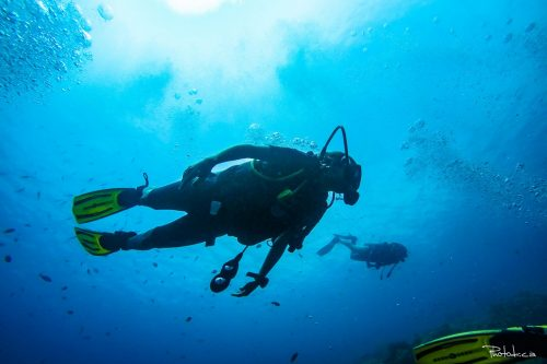 Apprendre à plonger à Bali, certification PADI Open Water