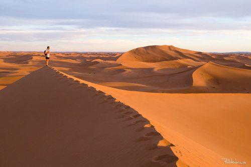 Une expédition marquante dans le Sahara sauvage de M'Hamid au Maroc