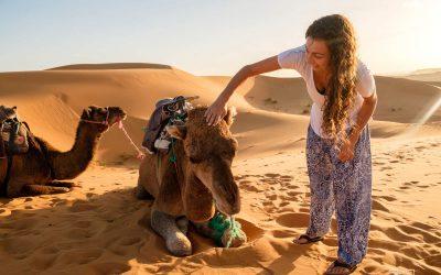 Le désert du Sahara en dromadaire à Merzouga: l'expérience d'une vie