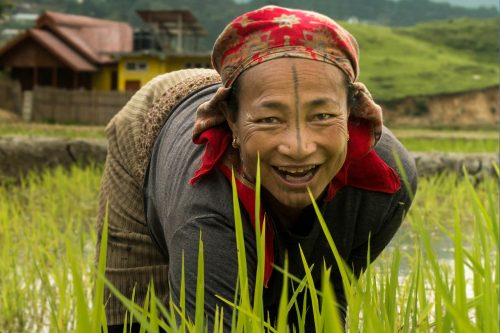 Vivre un mois dans une tribu reculée de l'Inde: l'histoire unique de Cassandre