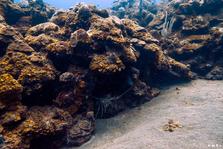 L'ile de Saba, un joyau méconnu des Caraïbes